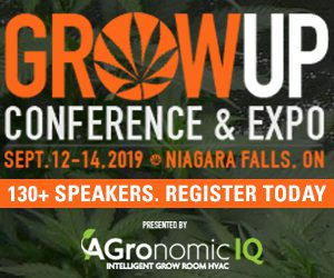 Grow Up Conference rectangle ad, Aug – Sep 2019