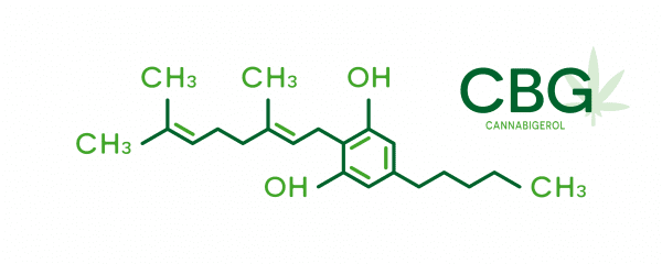 Producers are leading the way with research and development of lesser known cannabinoids such as CBG, CBN, THCV, and Delta 8.